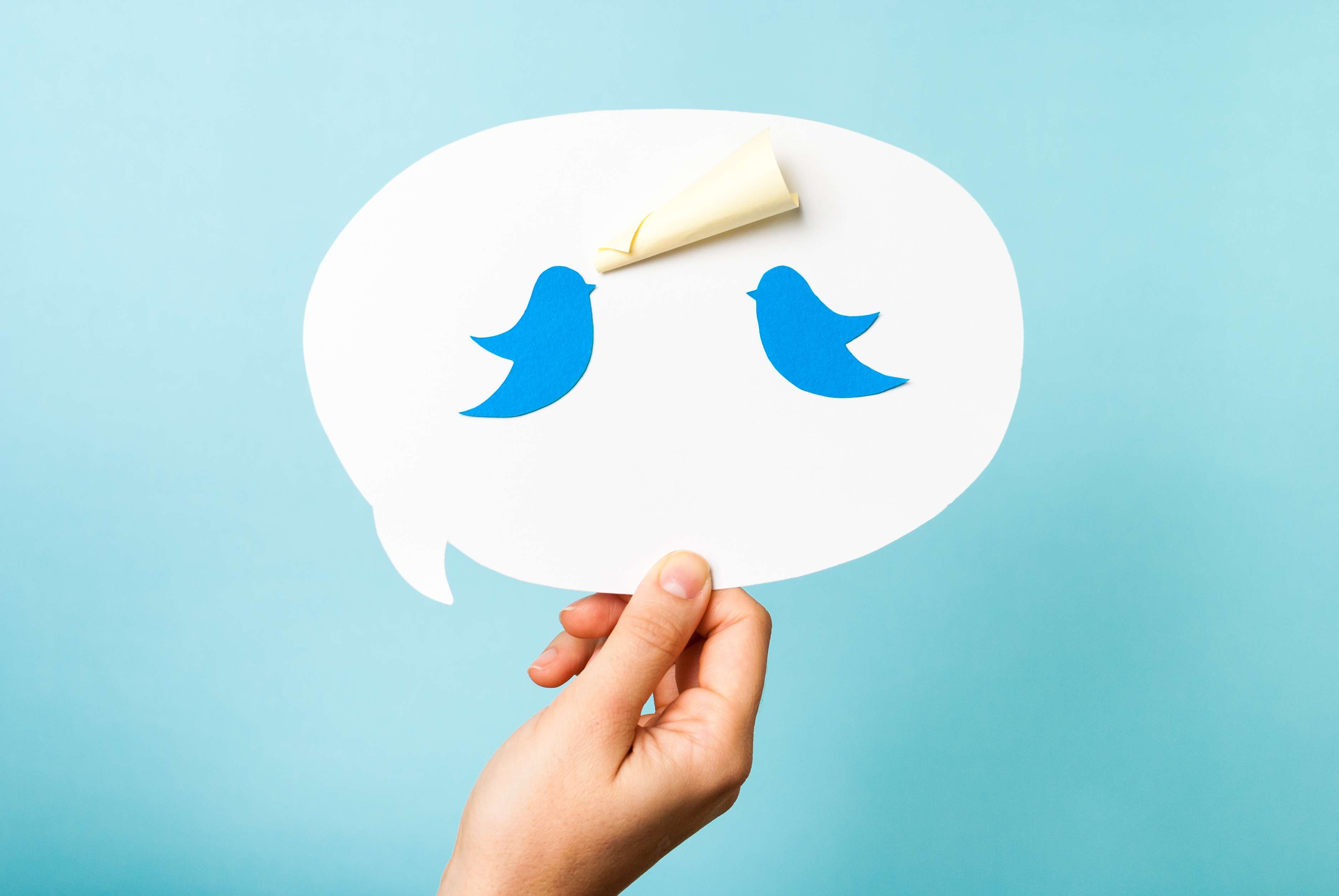 Among Twitter users, plastic surgery could benefit from rejuvenation
