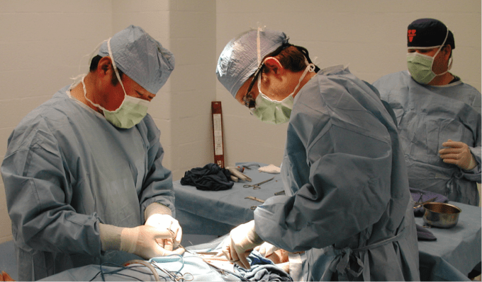 Dr. Guanyi Lu and residents perform an aortic aneurysm surgery on a porcine model.